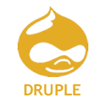 Druple Responsive Website Design